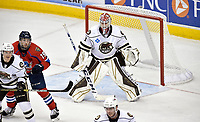 HERSHEY, PA - DECEMBER 01: Hershey Bears goalie Ilya Samsonov (1) squares up to a shooter during the Springfield Thunderbirds at Hershey Bears on December 1, 2018 at the Giant Center in Hershey, PA. (Photo by Randy Litzinger/Icon Sportswire)