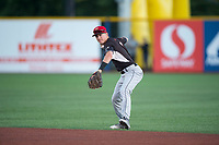 Salem-Keizer Volcanoes second baseman Kyle McPherson (2) prepares to make a throw to first base during a Northwest League game against the Hillsboro Hops at Ron Tonkin Field on September 1, 2018 in Hillsboro, Oregon. The Salem-Keizer Volcanoes defeated the Hillsboro Hops by a score of 3-1. (Zachary Lucy/Four Seam Images)