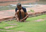Lawn cutter at the Taj Mahal