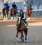 LOUISVILLE, KENTUCKY - APRIL 27: Improbable, trained by Bob Baffert, exercises in preparation for the Kentucky Derby at Churchill Downs in Louisville, Kentucky on April 27, 2019. John Voorhees/Eclipse Sportswire/CSM