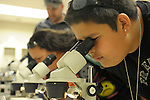Brandon Deen, 13, right, Erica Baslee, and Scot Bergersen, all of Freemont, CA, look at flower parts during Nevada Wildflower Family Fun Day at the Nevada State Museum in Carson City Saturday April 11, 2015. Visitors to the museum were treated to loads of information, hands-on experiences and crafts.<br />