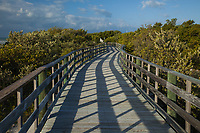 Anne's Beach Park, Boardwalk Nature Trail, Lower Matecumbe Key, Florida Keys, FL, America, USA.