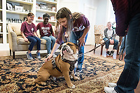 Children from Palmer Home in Columbus received a surprise visit Friday [Dec. 9] from Jak, Bully XXI. Petting MSU's beloved mascot was among activities held during an &quot;Animals in Focus&quot; visit by students from the Mississippi State College of Veterinary Medicine's shelter medicine program. The children also got to visit with student athletes from various MSU athletic teams.<br />  (photo by Tom Thompson / &copy; Mississippi State University)