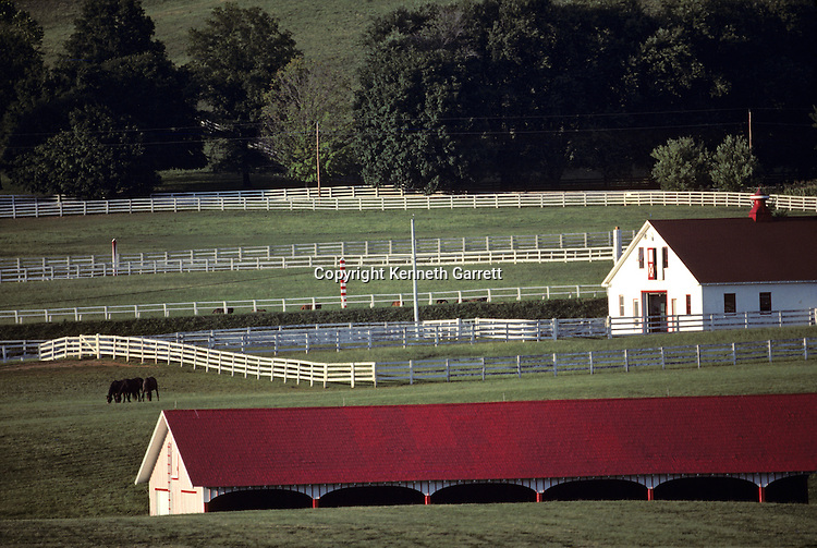 Maryland, Horse Farm
