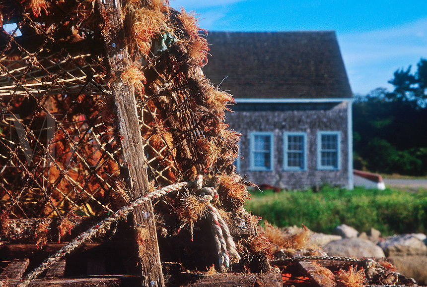 Lobster traps and boathouse, Chatham, Cape Cod