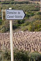 Domaine de Canet-Valette Cessenon-sur-Orb St Chinian. Languedoc. France. Europe. Vineyard.
