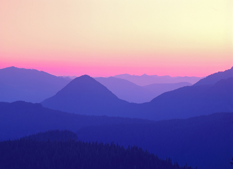 View from Mt. Rainier at sunset. Mt. Rainier National Park, Washington