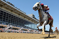 Il Vivano wins the Chick Lang Stakes on the undercard on Preakness Day at Pimlico Race Course on May 19, 2012