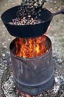 Fresh organic Chestnuts roasting (Castanea sativa)
