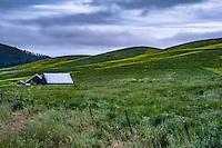 San Luis Obispo Landscape