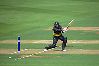 Steve Murdoch bats during the Ford Trophy cricket match between the Wellington Firebirds and Northern Districts at Hawkins Finance Basin Reserve, Wellington, New Zealand on Saturday, 27 January 2018. Photo: Dave Lintott / lintottphoto.co.nz