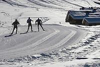 Europe/France/Rhone-Alpes/74/Haute-Savoie/Megève: ski de fond et chalets vers le Mont d'Arbois