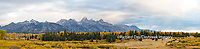 67545-08916 Fall color from Blacktail Ponds Overlook, Grand Teton National Park, WY