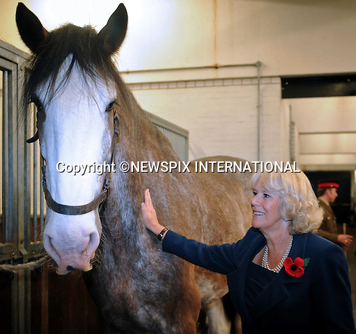 """CAMILLA, DUCHESS OF CORNWALL.visits The Household Cavalry Mounted Regiment (HCMR) at Hyde Park Barracks, Knightsbridge, London_4/11/2010.Photo Credit: ©D Harmer_Newspix International..**ALL FEES PAYABLE TO: """"NEWSPIX INTERNATIONAL""""**..PHOTO CREDIT MANDATORY!!: NEWSPIX INTERNATIONAL..IMMEDIATE CONFIRMATION OF USAGE REQUIRED:.Newspix International, 31 Chinnery Hill, Bishop's Stortford, ENGLAND CM23 3PS.Tel:+441279 324672  ; Fax: +441279656877.Mobile:  0777568 1153.e-mail: info@newspixinternational.co.uk."""