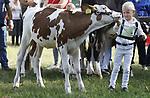 Foto: VidiPhoto<br /> <br /> BEESD &ndash; De jaarlijkse Dairy Fair in Beesd op Landgoed Mari&euml;nwaerdt in Beesd, krijgt internationale allures. Opnieuw waren er zaterdag tijdens de zesde editie van het evenement op de bekende Landgoedfair, meer bezoekers en deelnemers dan voorgaande jaren. De belangstelling van zowel veehouders, vee, als (internationaal) publiek voor de fokveedag neemt ieder jaar toe waardoor de Dairy Fair inmiddels uitgegroeid is tot een van de grootste regionale veekeuringen. Om de veetentoonstelling tijdens de landgoedfair in Beesd te houden is een bewuste keuze van de organisatie. Op deze wijze presenteert de landbouw zich op een positieve wijze met topvee en goedgeschoren en gewassen (toiletteren) koeien en kalfjes, als &lsquo;tegenreactie&rsquo;op het vaak negatieve nieuws over de agrarische sector. Op de fokveedag zaterdag waren in totaal 140 koeien en 22 kalfjes aangemeld, waarbij zowel de dieren als hun begeleiders er piekfijn uit moesten zien. Het zogenoemde voorgeleiden gaat volgens strenge regels, waarbij vooral op het contact tussen mens en dier wordt gelet. Doel van de keuring van de kalfjes is om kinderen van melkveehouders op jonge leeftijd vertrouwd laten raken met vee -en andersom- om het 'verwilderen' van melkvee te voorkomen. Melkveehouderijen worden steeds groter, waardoor boeren minder contact hebben met hun dieren.
