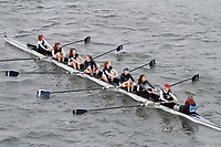 Crew: 203  Hills Road (Cantabrigian)  Event: Girls School 1st eights<br /> <br /> Schools' Head of the River 2017<br /> <br /> To purchase this photo, or to see pricing information for Prints and Downloads, click the blue 'Add to Cart' button at the top-right of the page.