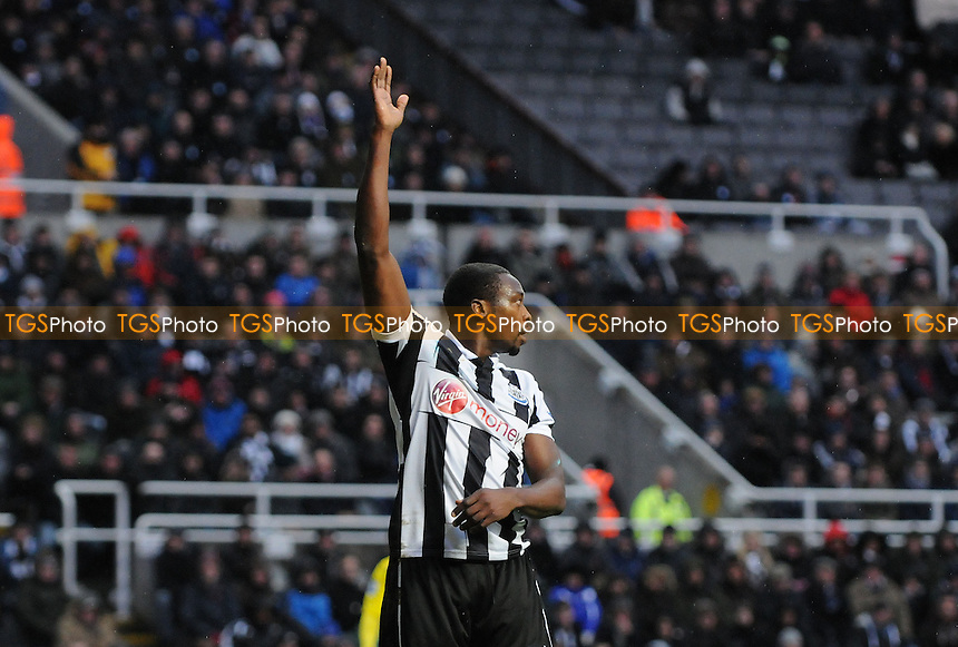 Newcastle United striker Shola Ameobi appeals a first half decision - Newcastle United vs Reading - Barclays Premier League Football at St James Park, Newcastle upon Tyne - 19/01/13 - MANDATORY CREDIT: Steven White/TGSPHOTO - Self billing applies where appropriate - 0845 094 6026 - contact@tgsphoto.co.uk - NO UNPAID USE.