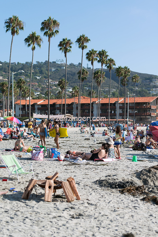 La Jolla Shores, San Diego, Beach, Crowed Beach, swimming, surfing, People, Big Surf, Ocean, Waves, Coastline, family-friendly beach