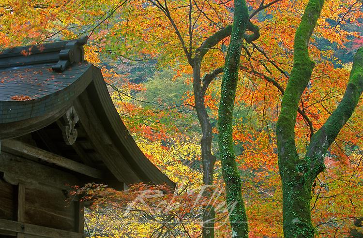 Kibune Shrine, Ohara, Kyoto, Japan