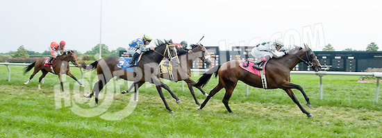 Storm Palm winning at Delaware Park on 9/1/12