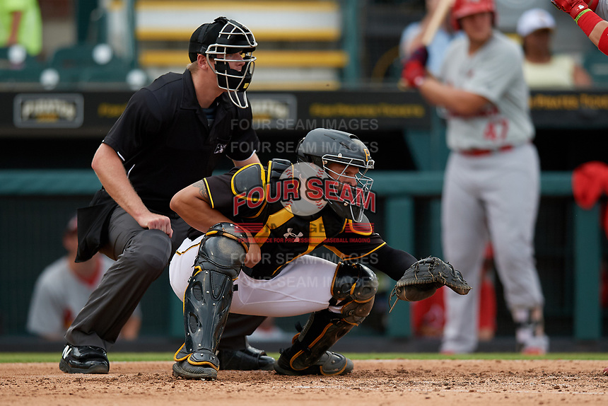 Bradenton Marauders catcher Deon Stafford (37) and umpire Louie Krupa await the pitch during a Florida State League game against the Palm Beach Cardinals on May 10, 2019 at LECOM Park in Bradenton, Florida.  Bradenton defeated Palm Beach 5-1.  (Mike Janes/Four Seam Images)