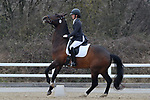 Class 9. British Dressage. Brook Farm training centre. Stapleford abbots. Essex. 24/03/2018. ~ MANDATORY CREDIT Garry Bowden/SIPPA - NO UNAUTHORISED USE - +44 7837 394578