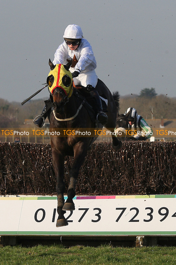 Race winner Nozic ridden by Gemma Gracey-Davison jumps the last in the Plumpton Annual Members Handicap Chase - Horse Racing at Plumpton Racecourse, East Sussex - 12/03/12 - MANDATORY CREDIT: Gavin Ellis/TGSPHOTO - Self billing applies where appropriate - 0845 094 6026 - contact@tgsphoto.co.uk - NO UNPAID USE.
