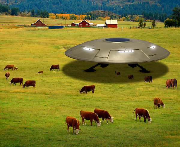 Landed UFO in a field abducting cattle