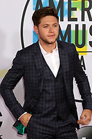 LOS ANGELES, CA - NOVEMBER 19: Niall Horan at the 2017 American Music Awards at Microsoft Theater on November 19, 2017 in Los Angeles, California. Credit: David Edwards/MediaPunch /NortePhoto.com