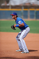 Texas Rangers Ronald Guzman (73) during an instructional league game against the Los Angeles Angels / Chicago Cubs co-op team on October 5, 2015 at the Surprise Stadium Training Complex in Surprise, Arizona.  (Mike Janes/Four Seam Images)