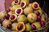 Nutmegs for Sale, George Town, Penang, Malaysia