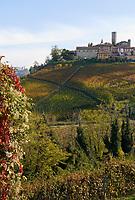 Italien, Piemont, Langhe, bei Alba, Weinort Castiglione Falletto | Italy, Piedmont, Langhe, near Alba, wine village Castiglione Falletto