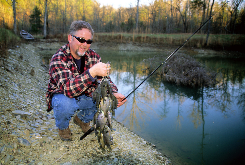 Fall angler with stringer of bluegills from private pond in Saline County, Arkansas