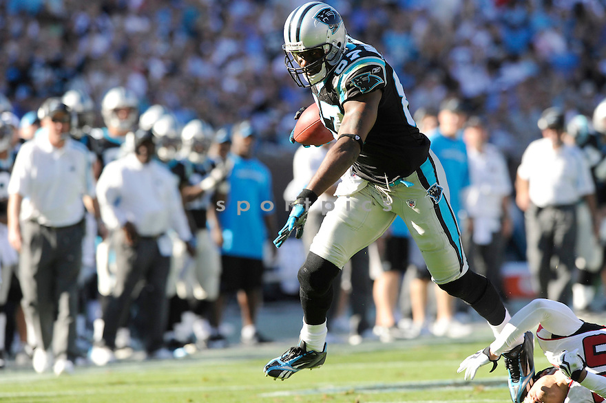 MUHSIN MUHAMMAD, of the Carolina Panthers, in action during the Panthers game against the Atlanta Falcons on November 15, 2009 in Charlotte, NC. Panthers won 28-19.