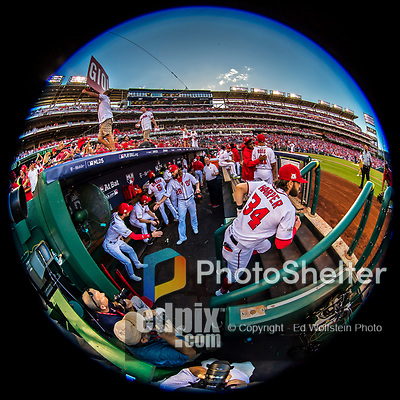 7 October 2017: A view of the dugout as Washington Nationals outfielder Bryce Harper leads team members onto the field prior to the start of the second game of the NLDS against the Chicago Cubs at Nationals Park in Washington, DC. The Nationals rallied to defeat the Cubs 6-3 and even their best of five Postseason series at one game apiece. Mandatory Credit: Ed Wolfstein Photo *** RAW (NEF) Image File Available ***