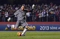 SÃO PAULO, SP, 05 DE SETEMBRO DE 2013 - CAMPEONATO BRASILEIRO - SÃO PAULO x CRICÚMA: XXXXXXXXX durante partida São Paulo x Criciúma, válida pela 18ª rodada do Campeonato Brasileiro de 2013, disputada no estádio do Morumbi em São Paulo. FOTO: LEVI BIANCO - BRAZIL PHOTO PRESS.