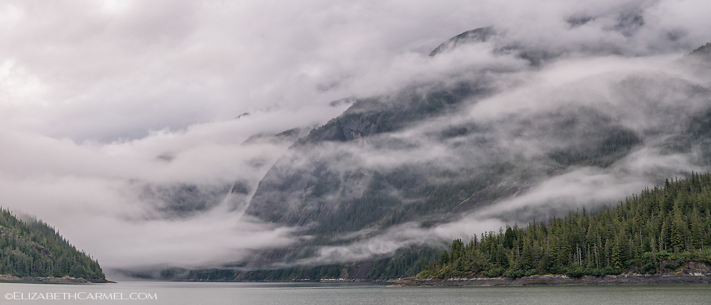 Tongass Mist