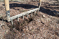 The broadfork is the ideal tool for loosening the soil and working in mulch that has over-wintered.