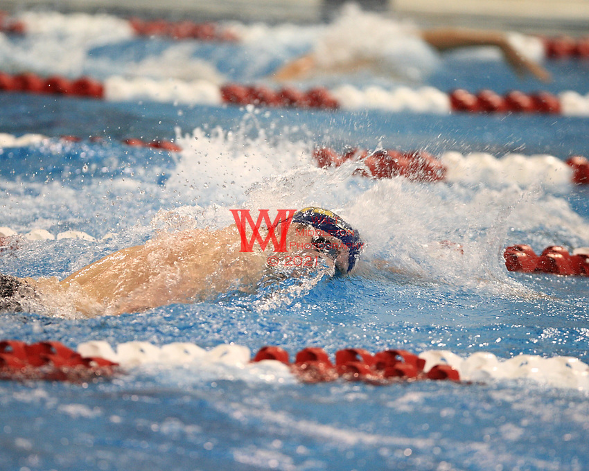 March 26th - 28th, 2010. The Ohio State University, Men's NCAA Swimming & Diving National Championships.