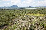 Flat plains landscape near Dambulla, Sri Lanka, Asia