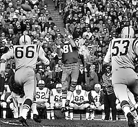 San Francisco 49ers Dave Parks leaps to grab pass from John Brodie, against the Baltimore Colts. (1966 <br />