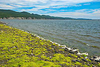 Low tide at Penouille Beach along the Gulf of St. Lawrence . Appalachians' northeasternmost tip in North America. <br />