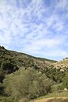 Israel, Upper Galilee, a view of Nahal Meron