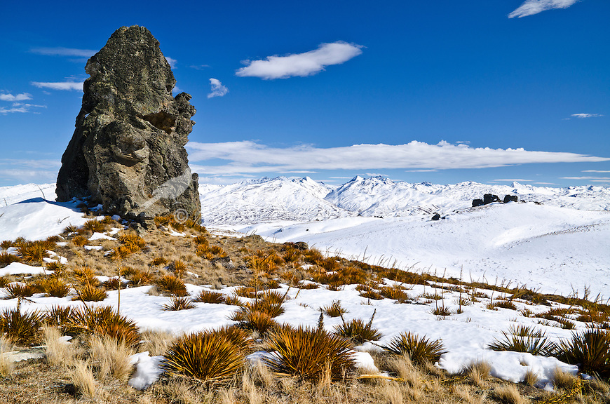 Rock Tor and Spaniard Grass, Duffers Saddle, Winter, Central Otago