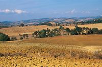 Italien, Toskana, Felder bei Capalbio