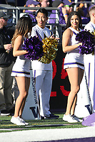 SEATTLE, WA - OCTOBER 28:  Washington cheerleader Shelby Bailey entertained fans during the game against UCLA on October 28, 2017 at Husky Stadium in Seattle, WA. Washington won 44-23 over UCLA.