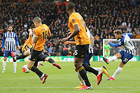 Alexis Mac Allister of Brighton & Hove Albion shoots as João Moutinho of Wolverhampton Wanderers try's to block during Wolverhampton Wanderers vs Brighton & Hove Albion, Premier League Football at Molineux on 7th March 2020