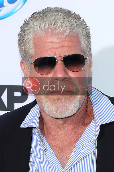 """Ron Perlman<br /> at the """"Sons of Anarchy"""" Season Six Premiere Screening, Dolby Theatre, Hollywood, CA 09-07-13<br /> David Edwards/Dailyceleb.com 818-249-4998"""