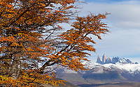 We visited Torres del Paine near the peak of autumn color.