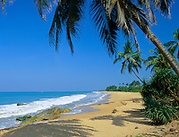 Sri Lanka, near Bentota: secluded beach | Sri Lanka, bei Bentota: einsamer Strand